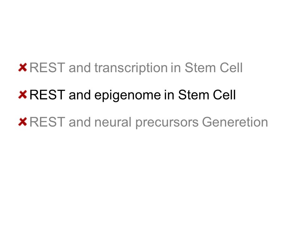 REST and transcription in Stem Cell