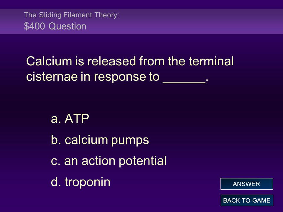 The Sliding Filament Theory: $400 Question