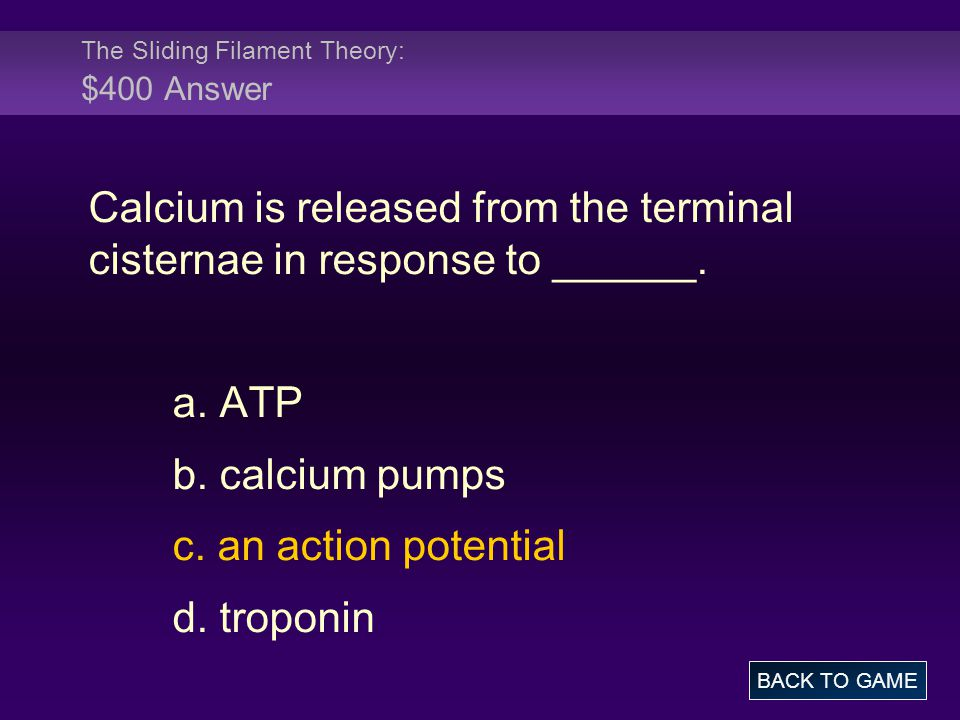 The Sliding Filament Theory: $400 Answer