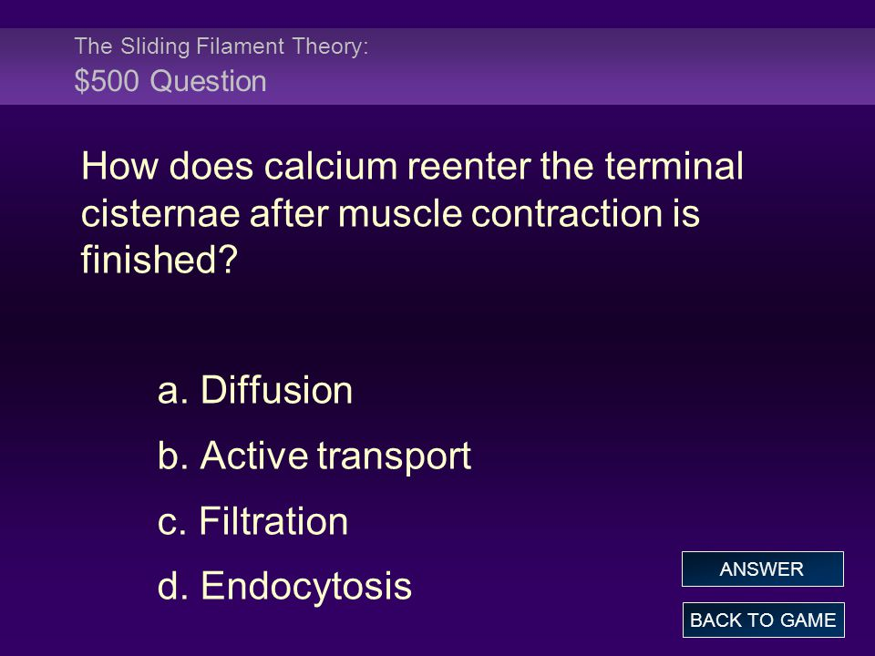 The Sliding Filament Theory: $500 Question