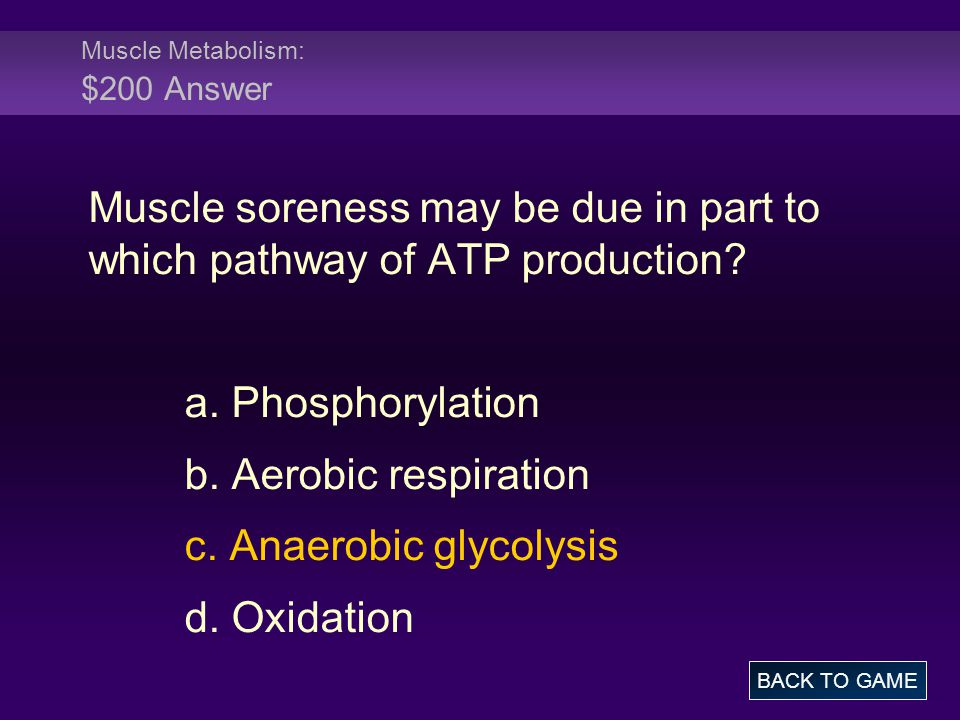 Muscle Metabolism: $200 Answer