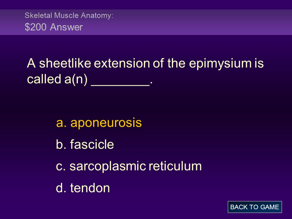 Skeletal Muscle Anatomy: $200 Answer