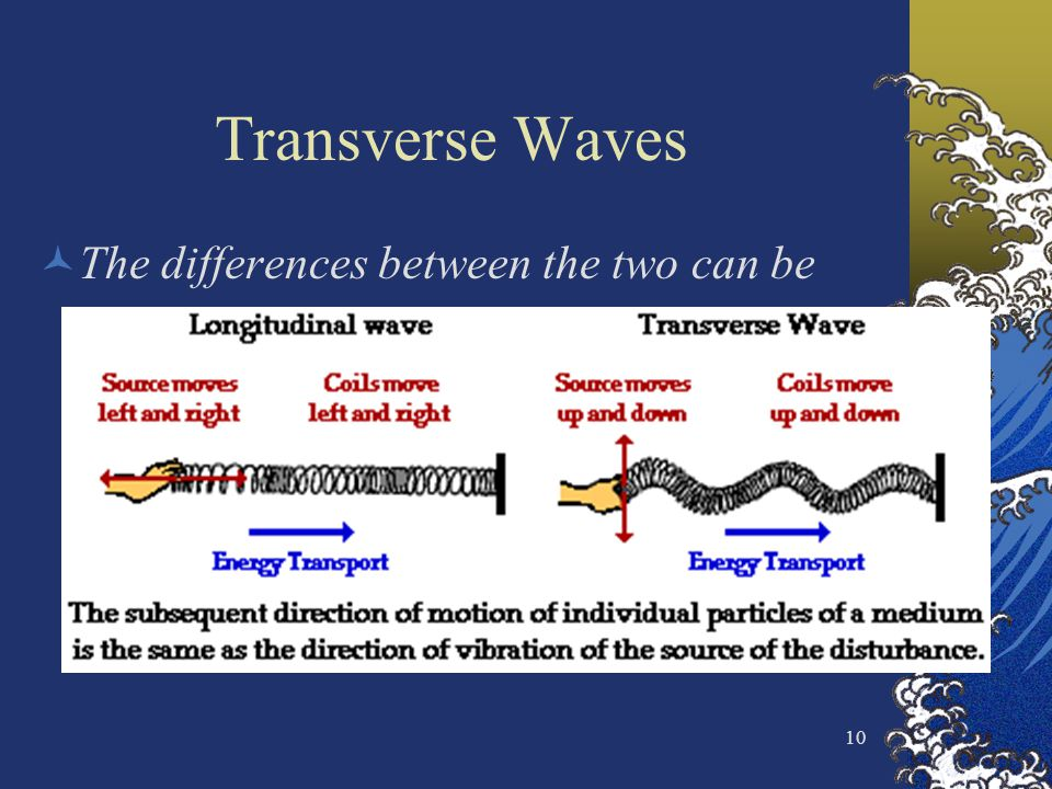 Transverse Waves The differences between the two can be seen
