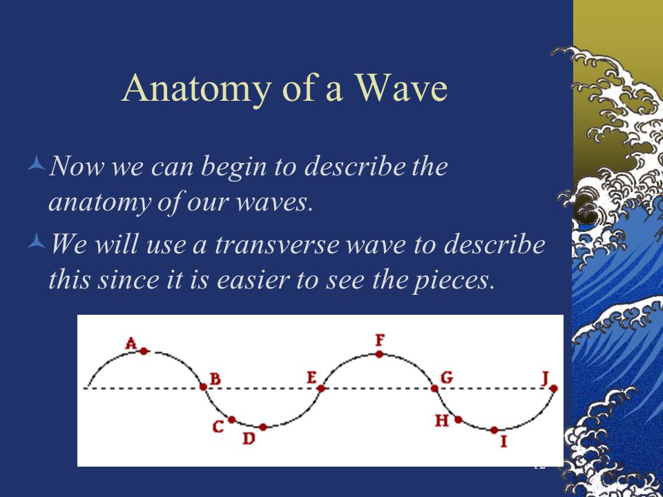 Anatomy of a Wave Now we can begin to describe the anatomy of our waves.