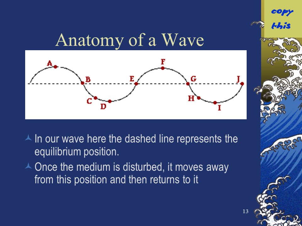 Anatomy of a Wave In our wave here the dashed line represents the equilibrium position.
