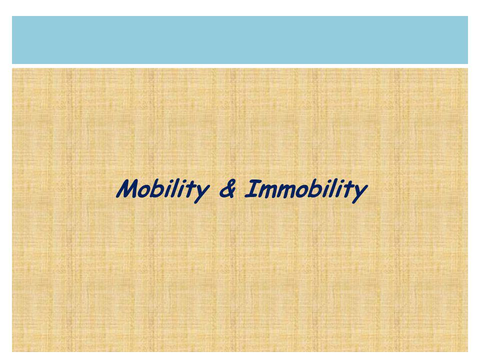 Mobility & Immobility
