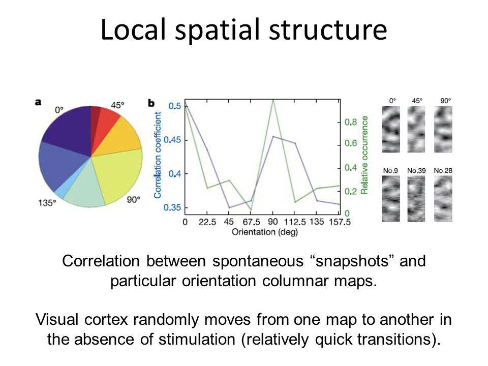 Local spatial structure