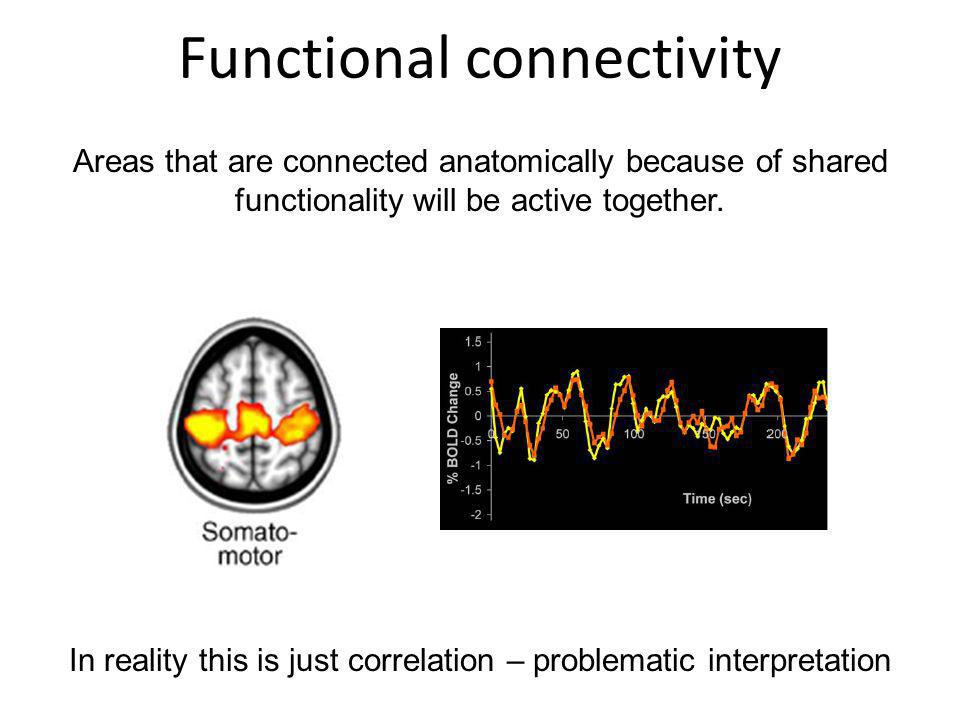 Functional connectivity