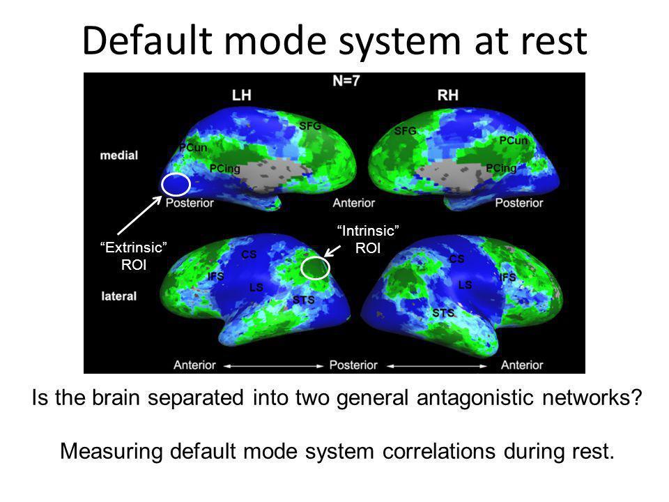 Default mode system at rest