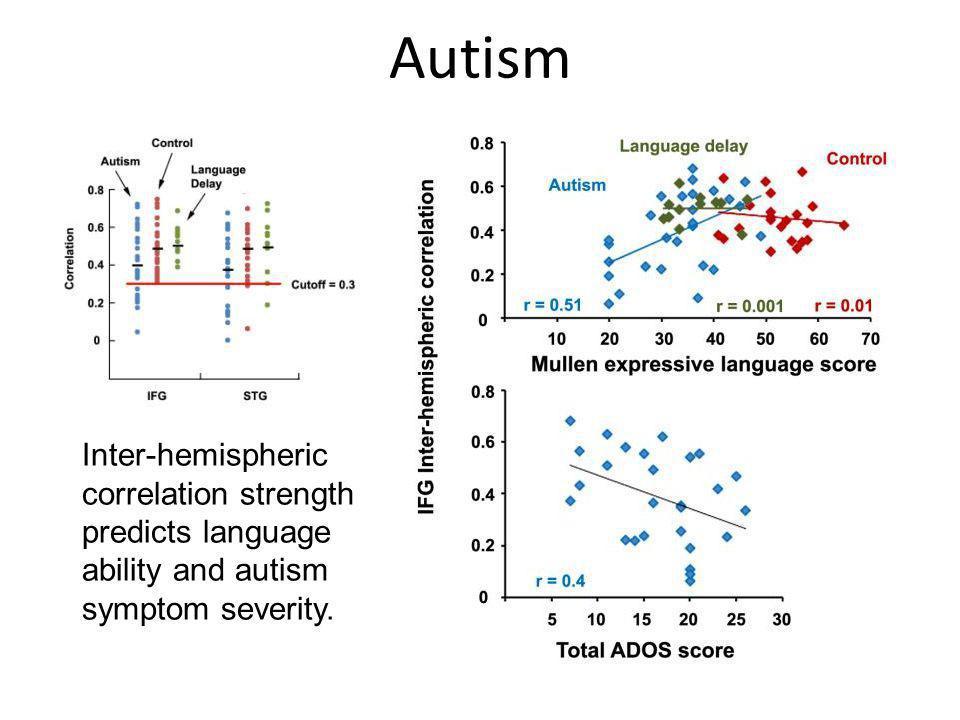 Autism Inter-hemispheric correlation strength predicts language ability and autism symptom severity.