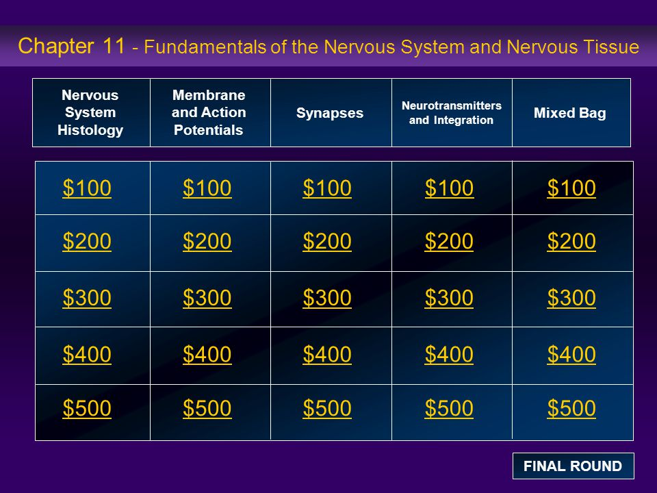 Chapter 11 - Fundamentals of the Nervous System and Nervous Tissue