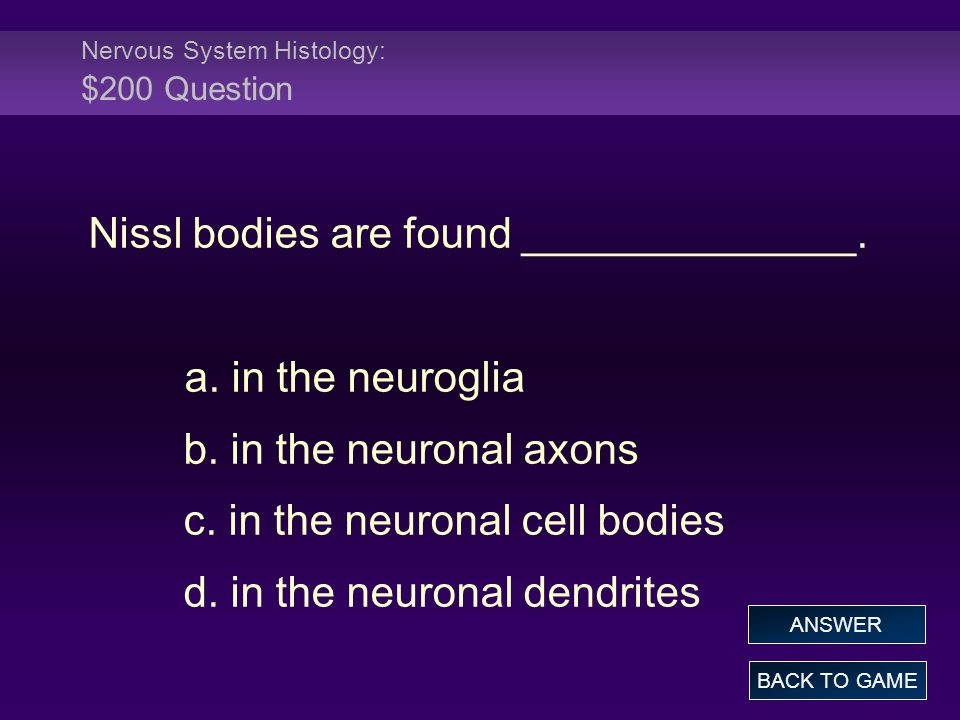 Nervous System Histology: $200 Question