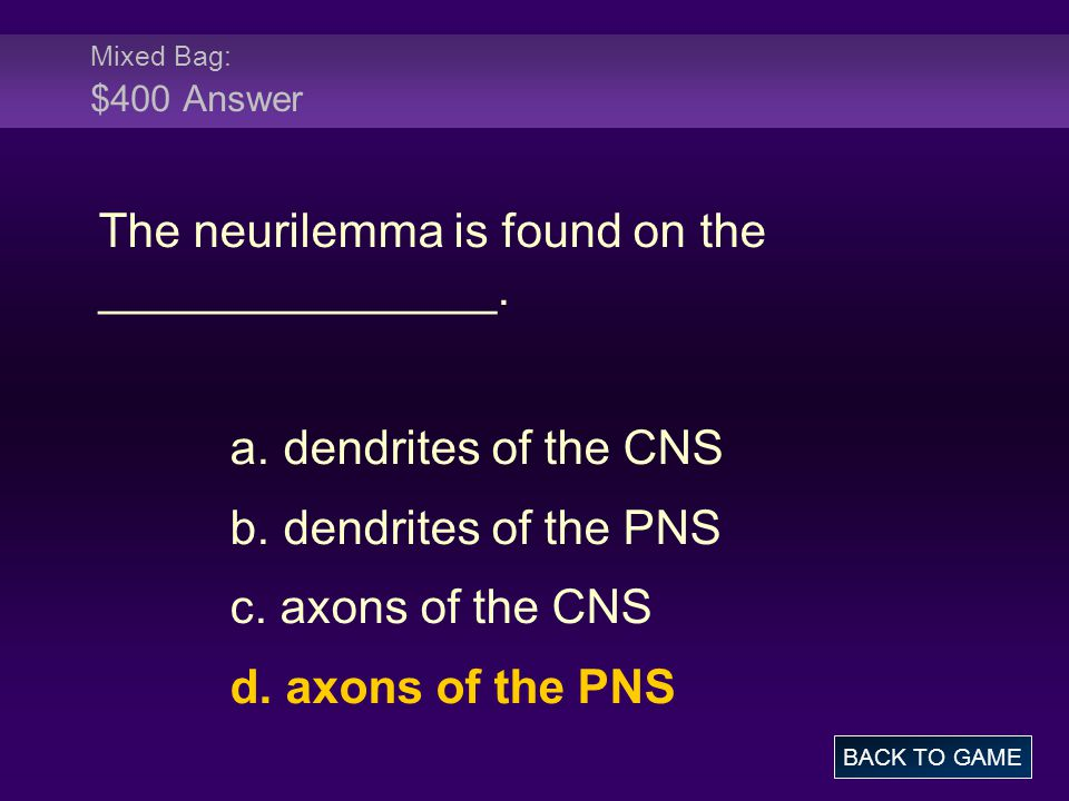 The neurilemma is found on the _______________.