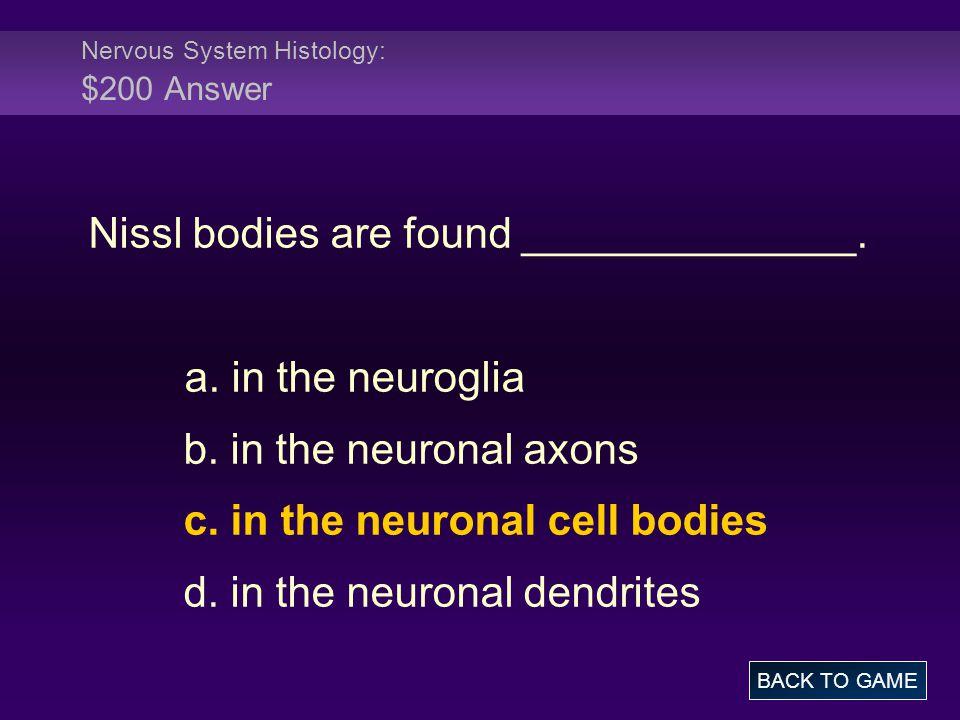 Nervous System Histology: $200 Answer