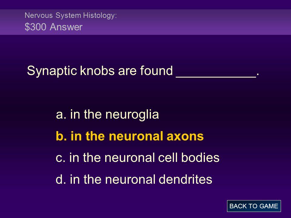 Nervous System Histology: $300 Answer