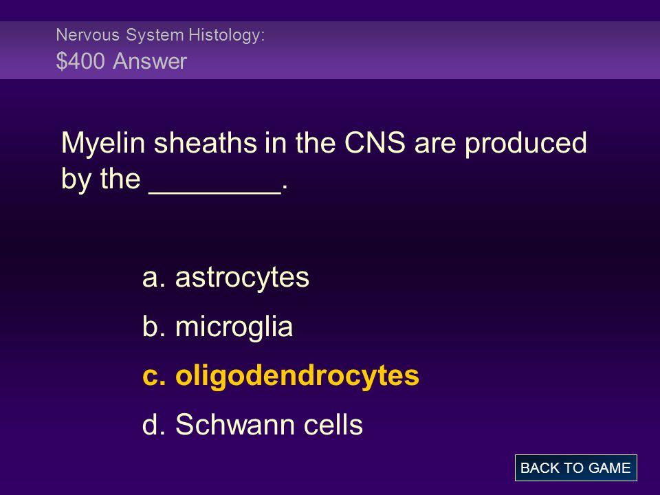 Nervous System Histology: $400 Answer
