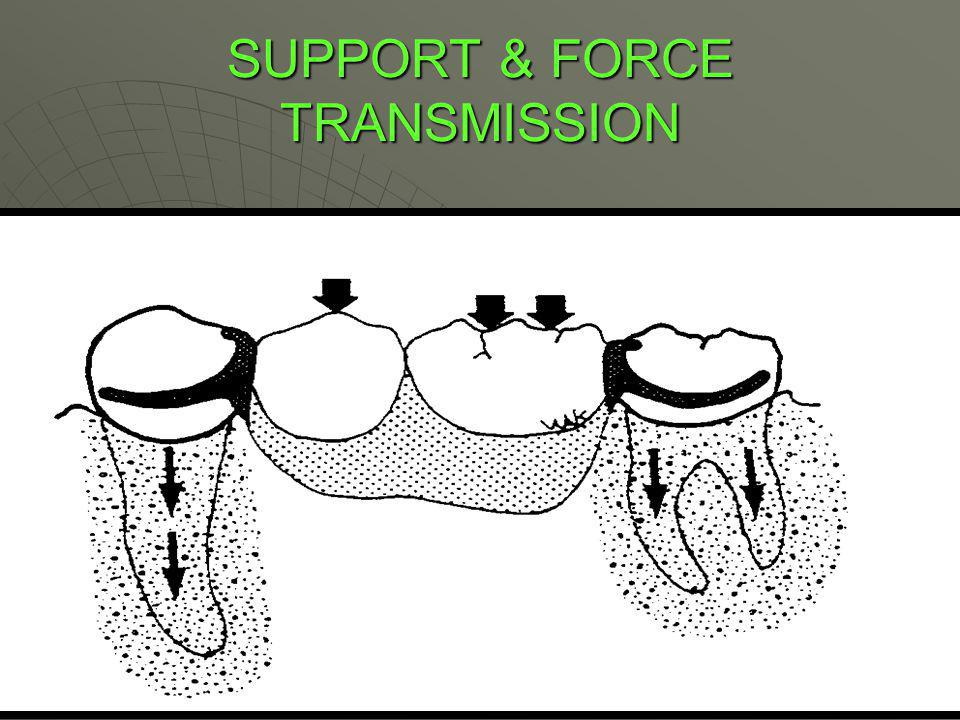 SUPPORT & FORCE TRANSMISSION
