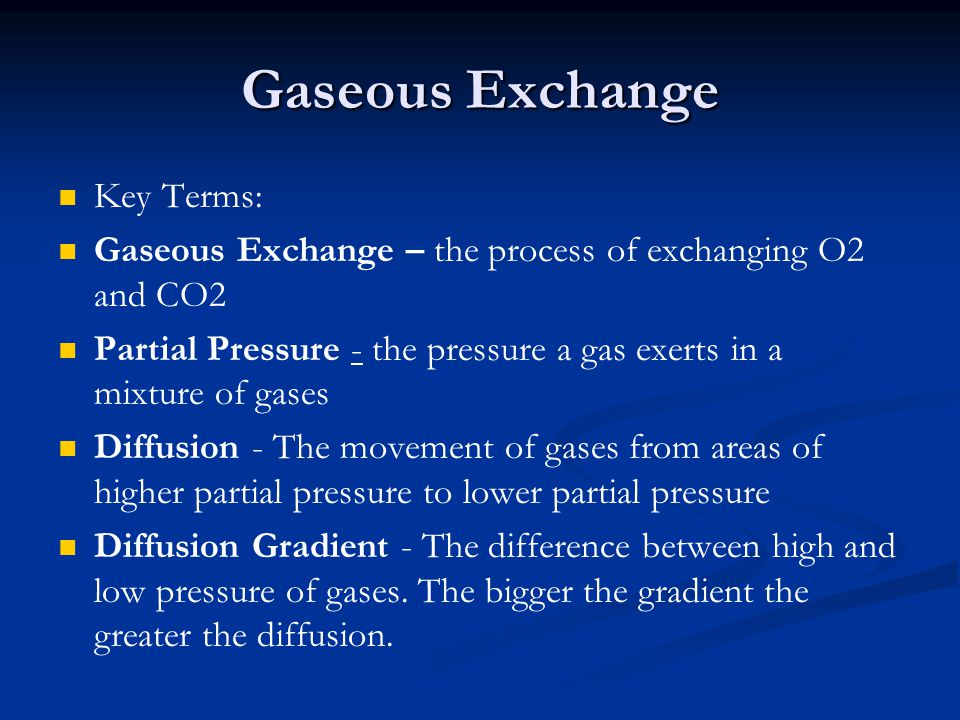 Gaseous Exchange Key Terms: