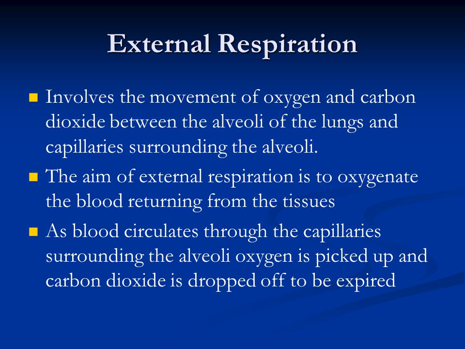 External Respiration Involves the movement of oxygen and carbon dioxide between the alveoli of the lungs and capillaries surrounding the alveoli.