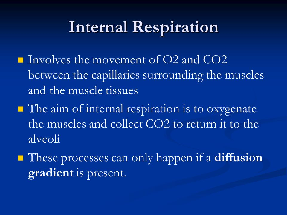 Internal Respiration Involves the movement of O2 and CO2 between the capillaries surrounding the muscles and the muscle tissues.