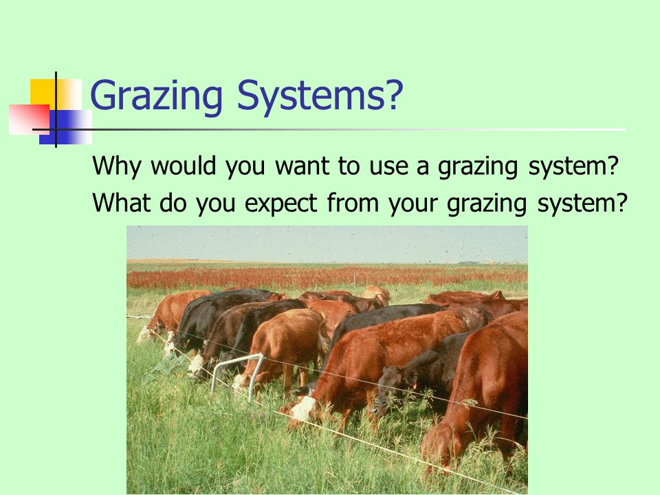 Grazing Systems Why would you want to use a grazing system