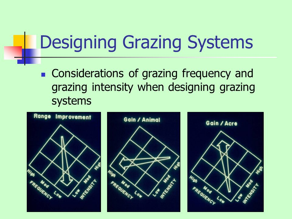 Designing Grazing Systems