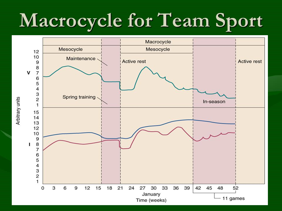 Macrocycle for Team Sport