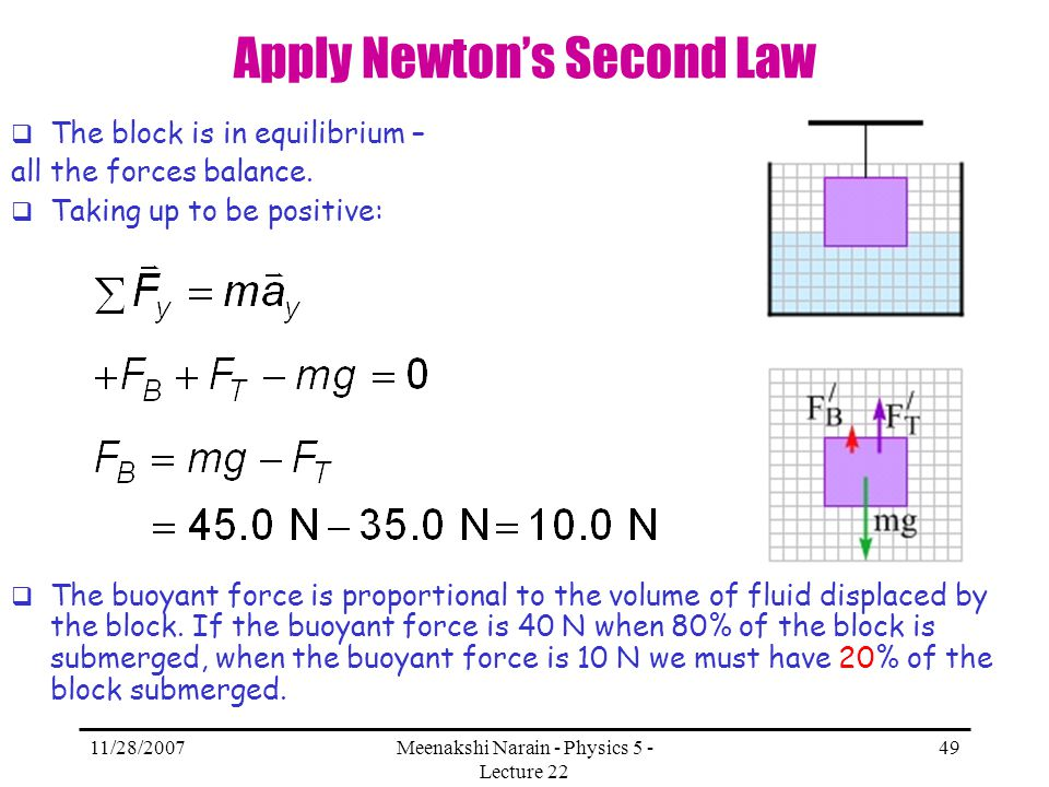 Apply Newton's Second Law