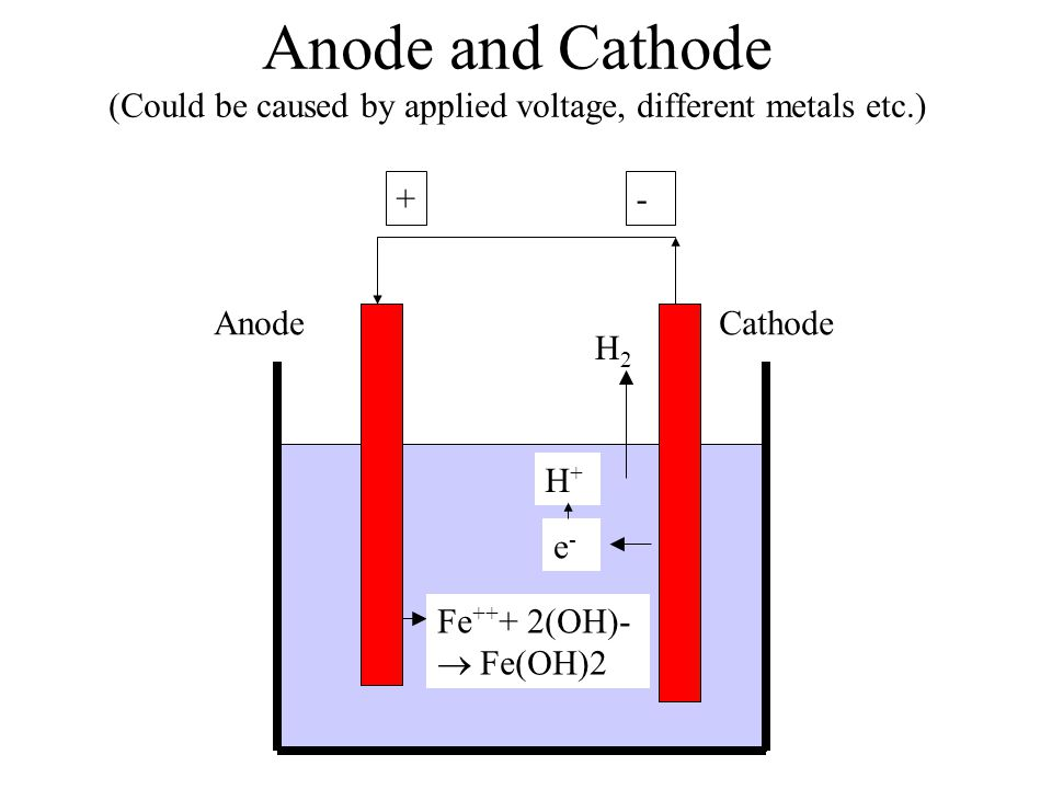 Anode and Cathode (Could be caused by applied voltage, different metals etc.)