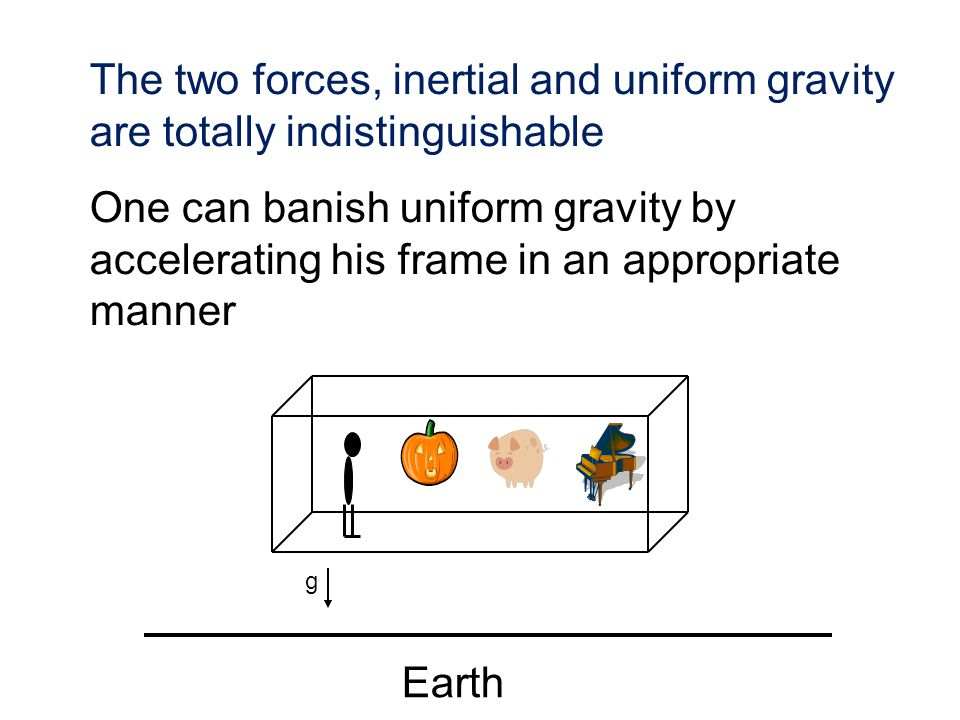 The two forces, inertial and uniform gravity are totally indistinguishable