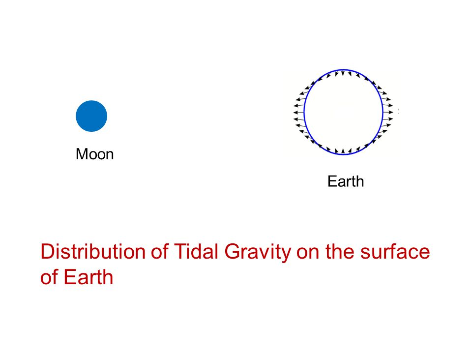 Distribution of Tidal Gravity on the surface of Earth