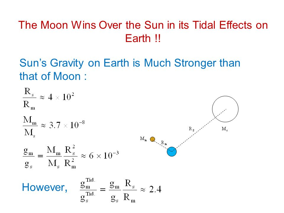 The Moon Wins Over the Sun in its Tidal Effects on Earth !!
