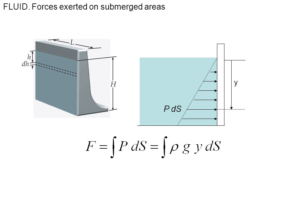 FLUID. Forces exerted on submerged areas