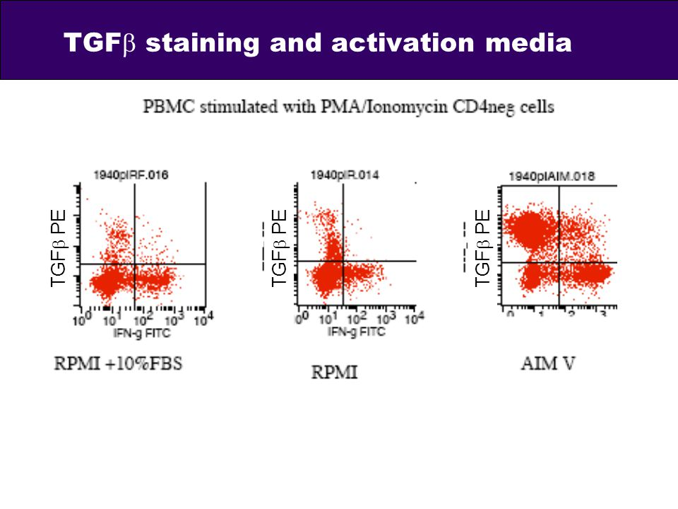 TGFb staining and activation media