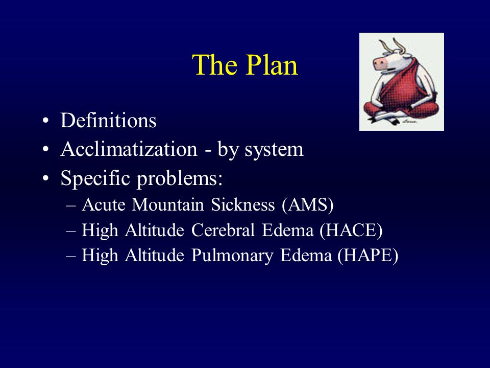 The Plan Definitions Acclimatization - by system Specific problems: