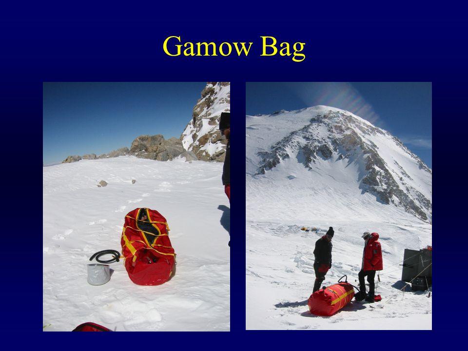 Gamow Bag