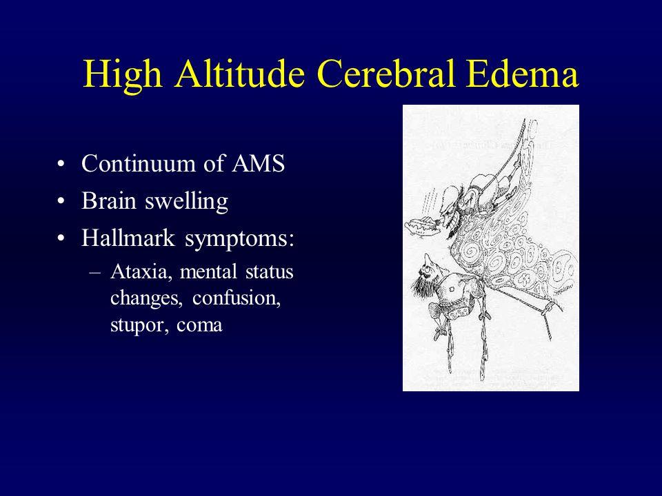 High Altitude Cerebral Edema