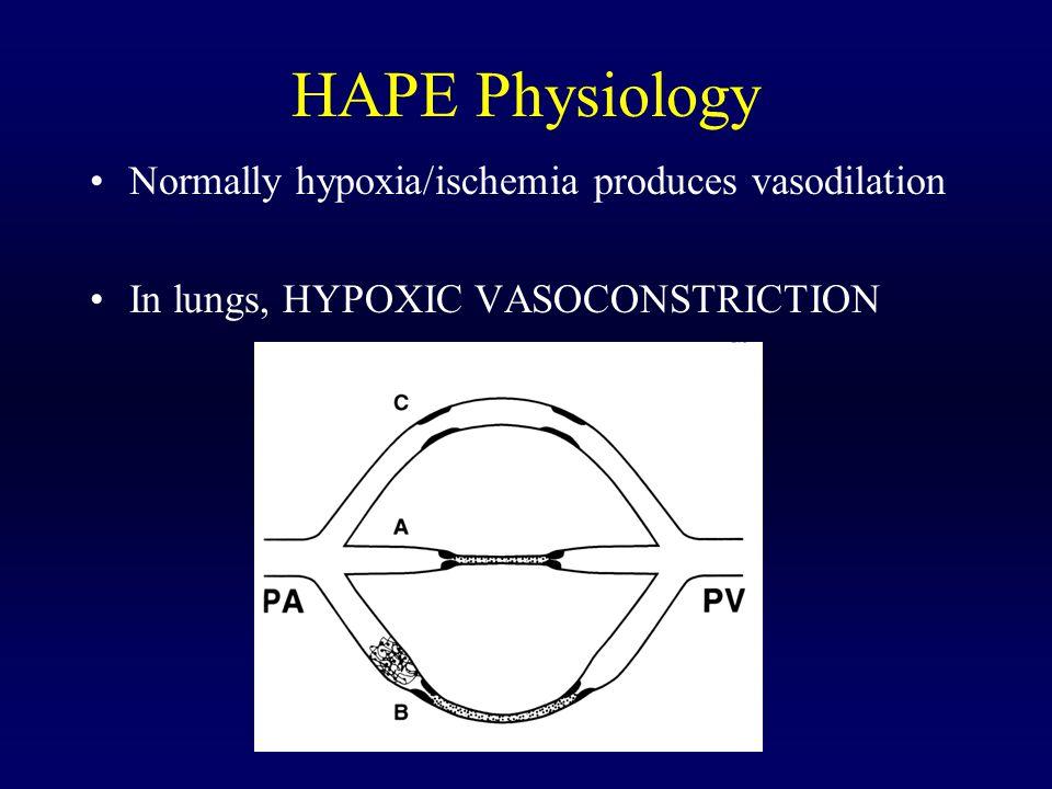 HAPE Physiology Normally hypoxia/ischemia produces vasodilation