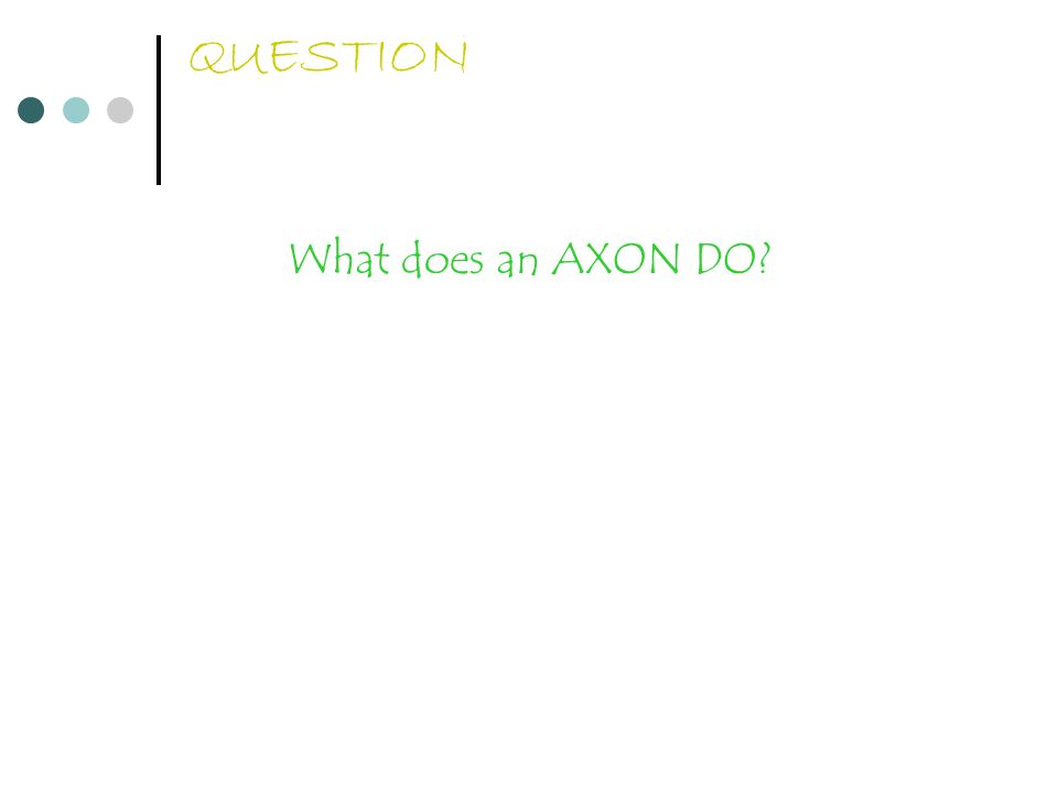 QUESTION What does an AXON DO