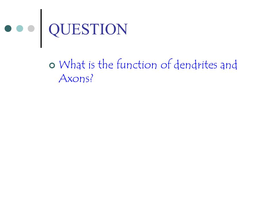 QUESTION What is the function of dendrites and Axons