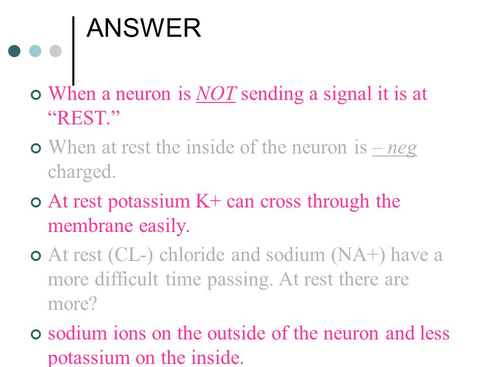 ANSWER When a neuron is NOT sending a signal it is at REST.