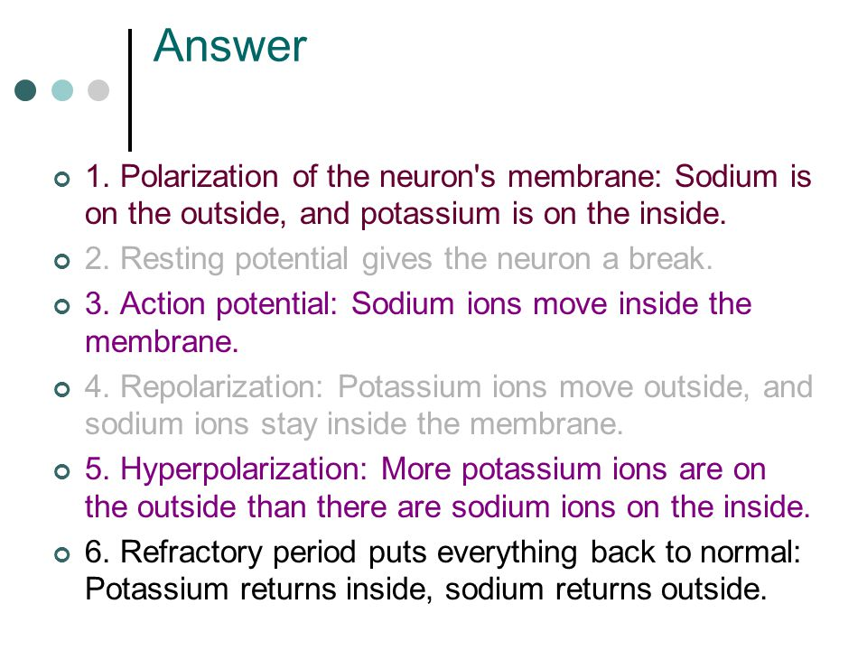 Answer 1. Polarization of the neuron s membrane: Sodium is on the outside, and potassium is on the inside.