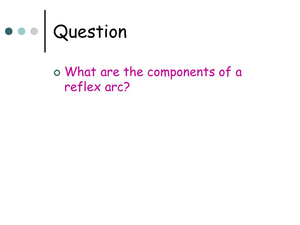 Question What are the components of a reflex arc