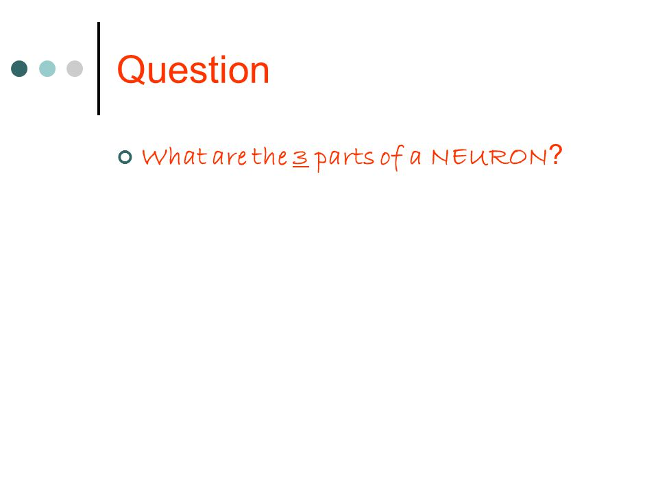 Question What are the 3 parts of a NEURON