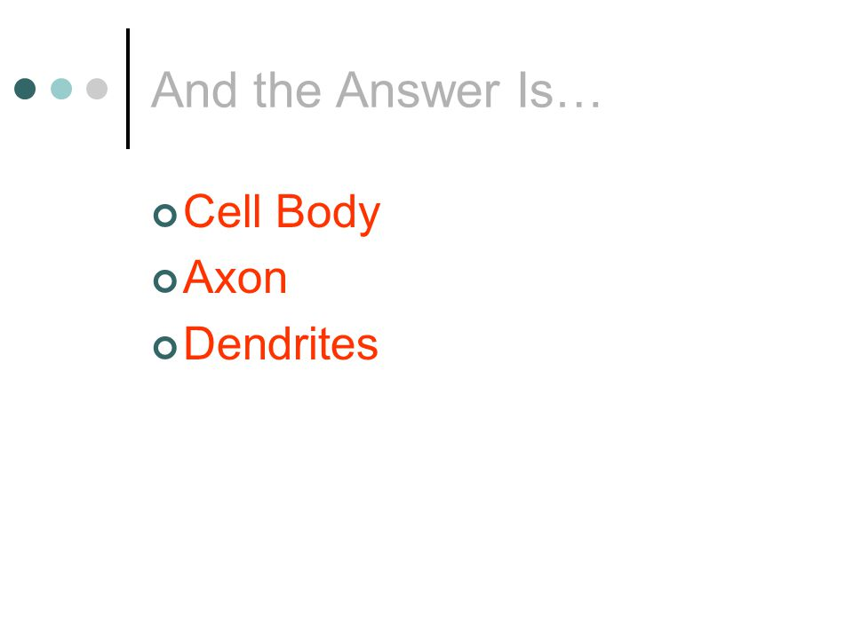 And the Answer Is… Cell Body Axon Dendrites