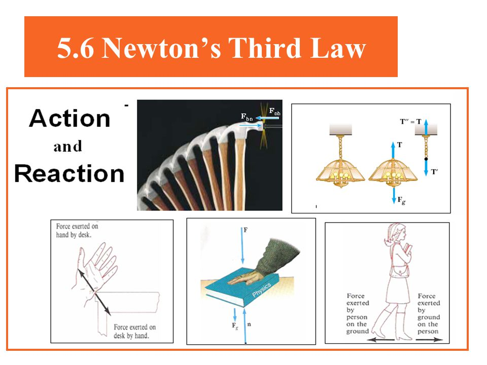 5.6 Newton's Third Law