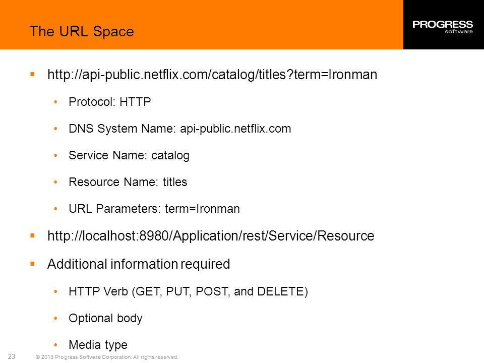 The URL Space http://api-public.netflix.com/catalog/titles term=Ironman. Protocol: HTTP. DNS System Name: api-public.netflix.com.