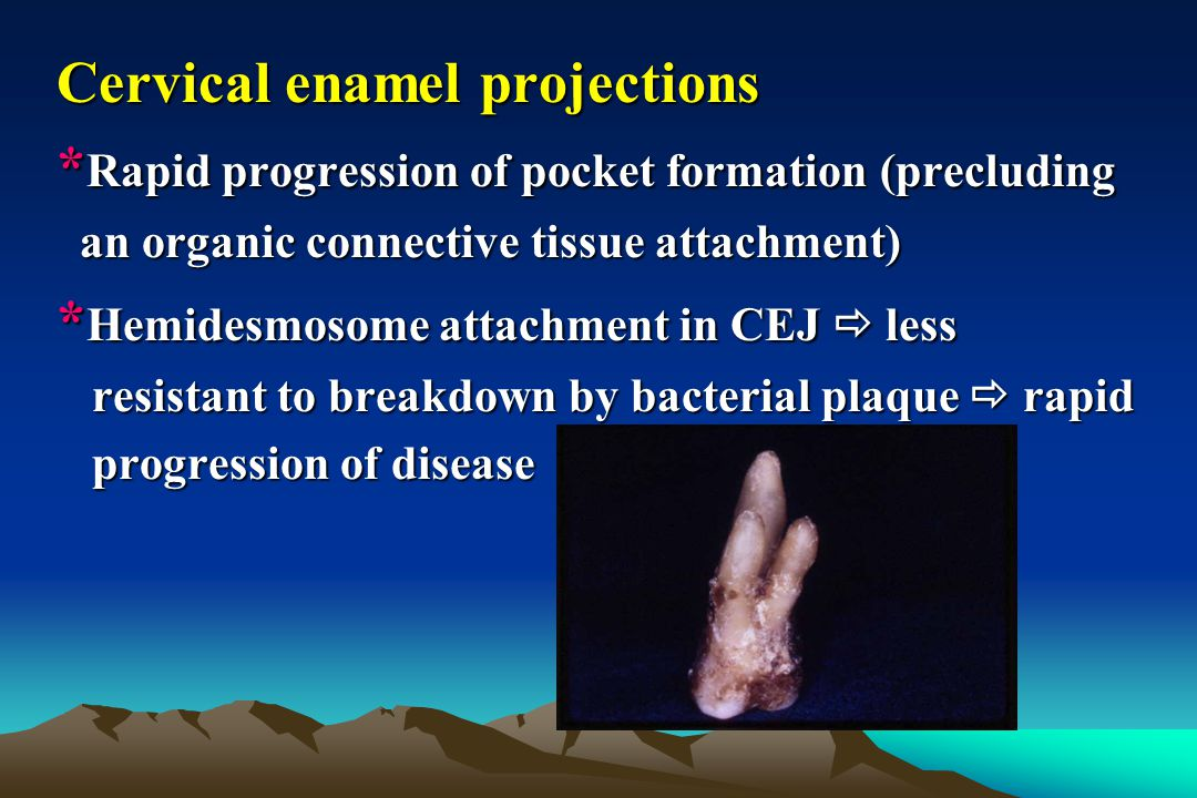 Cervical enamel projections