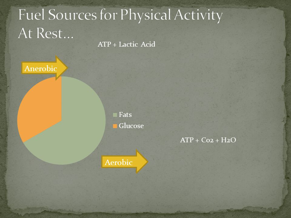 Fuel Sources for Physical Activity At Rest…