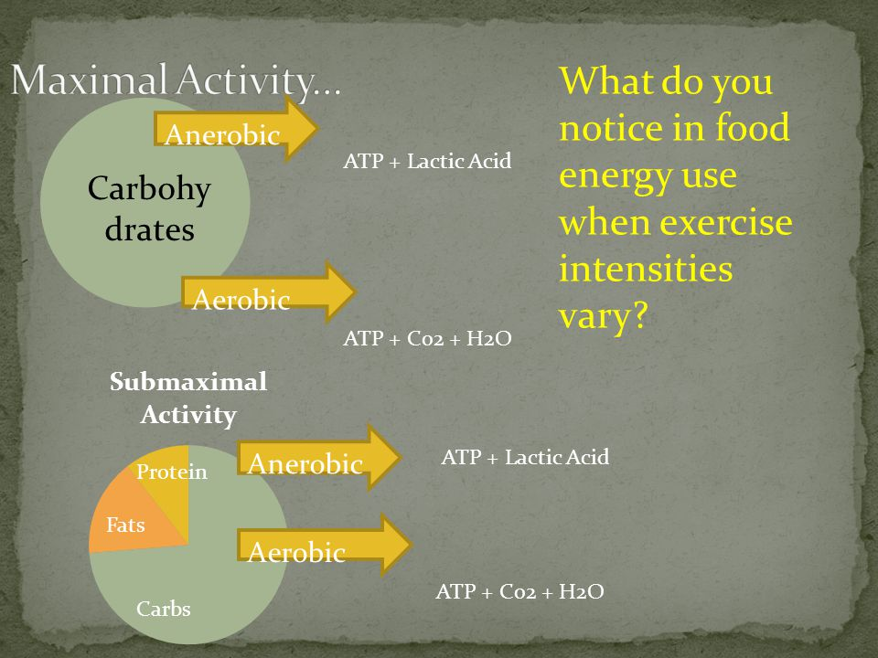 Maximal Activity… What do you notice in food energy use when exercise intensities vary Anerobic. ATP + Lactic Acid.